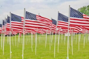 •flags for heroes